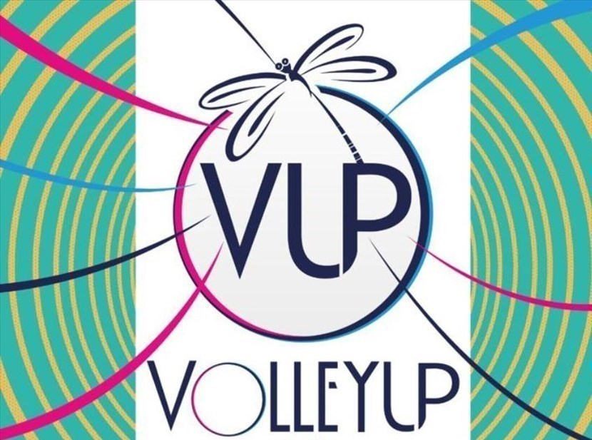 Logo Volleyup